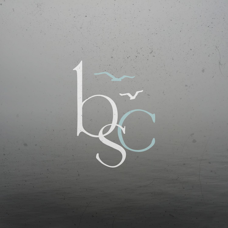 bsclogo-oceanoverlay-icon